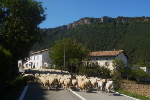 Maison Vue Pyrenees_27