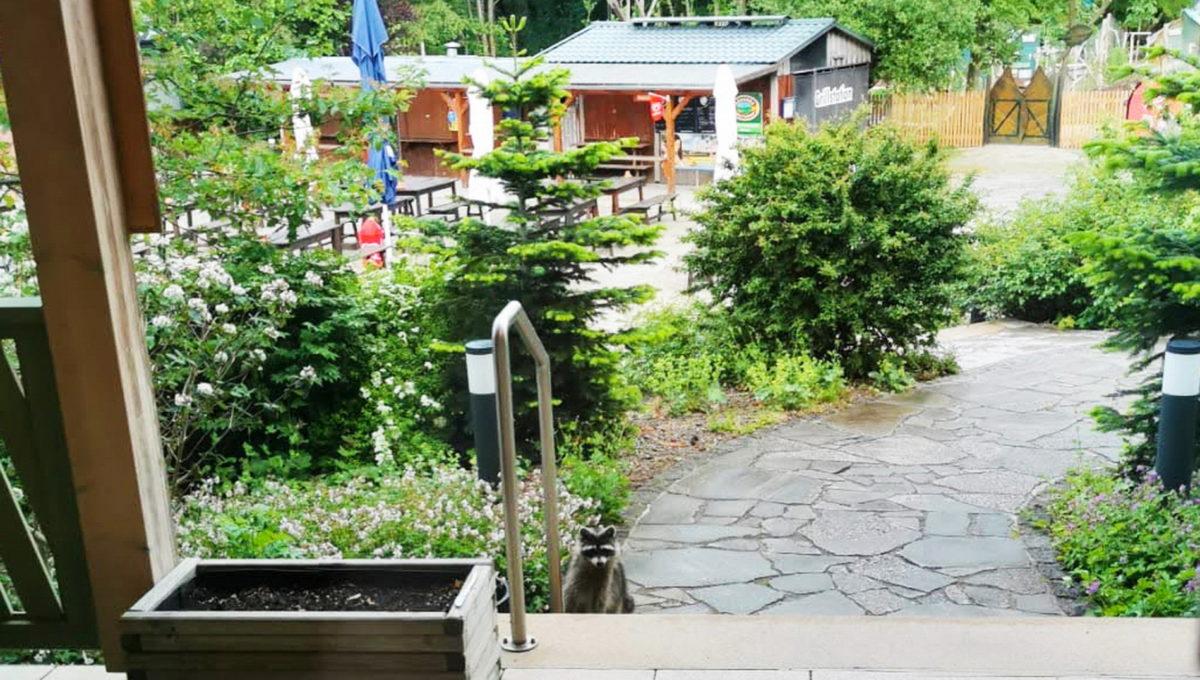 motorradhotels_info_Forsthaus Thiemsburg 13